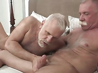 bareback bear blowjob